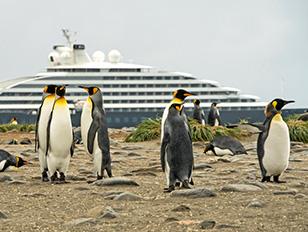 Wunderwelt Antarktis